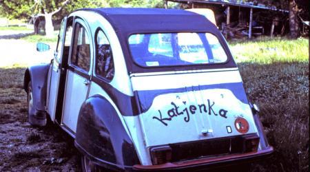 Citroën 2cv Babacool