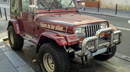 Voiture de collection « Jeep Born to be alive ! »