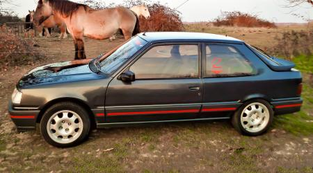 Voiture de collection « Peugeot 309 GTI 1987 »