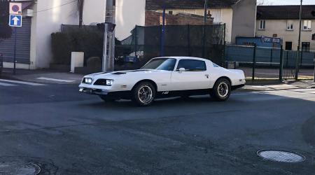 Voiture de collection « Pontiac Firebird »