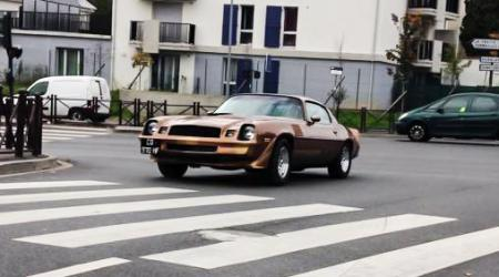 Voiture de collection « Pontiac Transam Firebird »